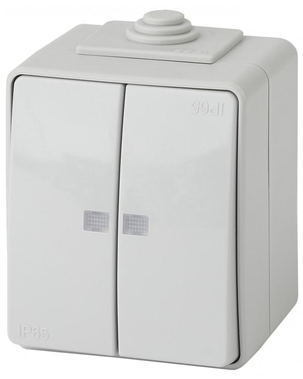 11-1605-03 ЭРА Выключатель двойной с подсветкой IP65, 10АХ-250В, ОУ, Эра Эксперт, серый (10/100/1600), 11-1605-03