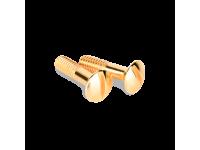 WL18-22-01/ Винты для распределительной коробки/TV розетки 2 шт. (золото) Ретро